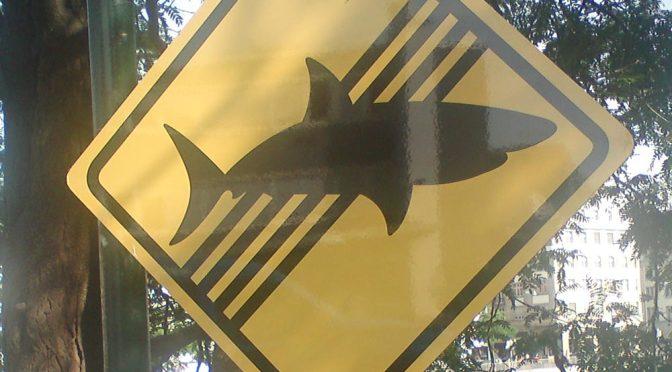 Keine-Haie-in-der-Limmat