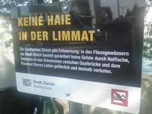Entwarnung_Keine-Haie-in-der-Limmat
